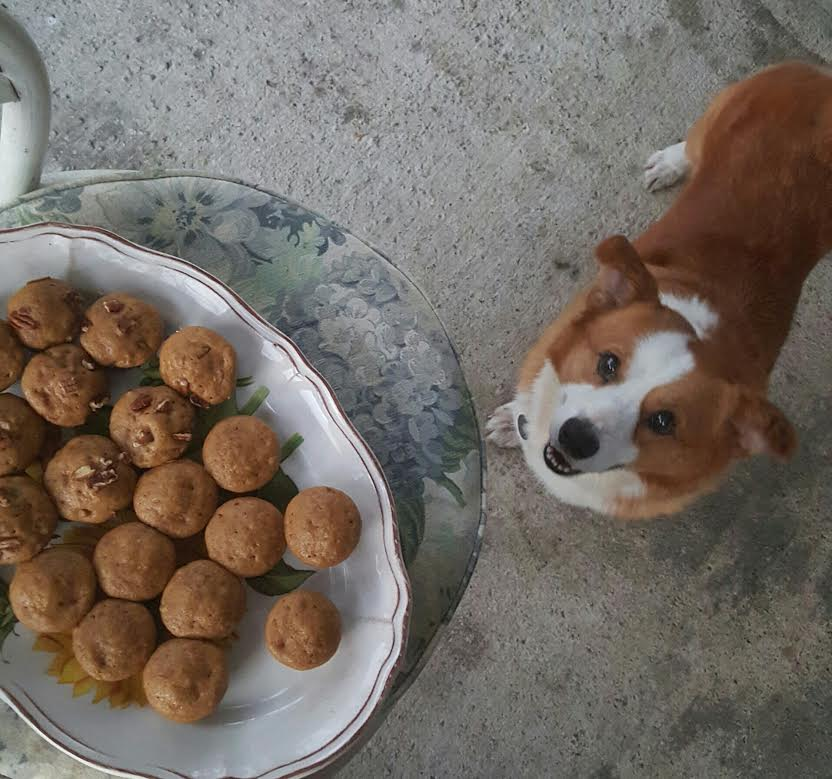 Judeau with muffins